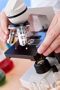 Микроскопическое исследование ВПГ