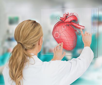 Врач-кардиолог и схема сердца