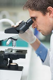 Исследователь изучает бактерии