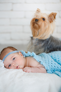 Иллюстрация грудного ребенка с собакой