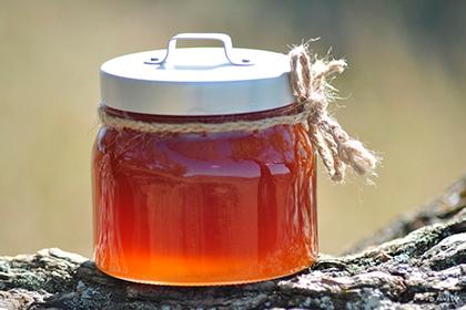 Гречишный мёд: польза и показания. Как отличить оригинал от подделки
