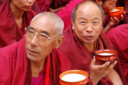 Тибетский гриб укрепляет здоровье благодаря полезным свойствам