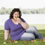 Белки иммунной системы и ожирение