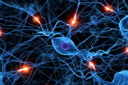 Разные схемы мозговой активности