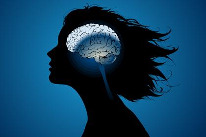 Вычислительные и эмоциональные функции мозга не совместимы